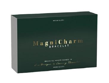 MagniCharm Bracelet composition
